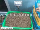 Siput Balitong Frozen Clam