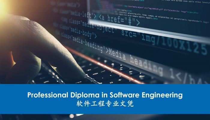 Professional Diploma in Software Engineering (Programming, Online Learning)