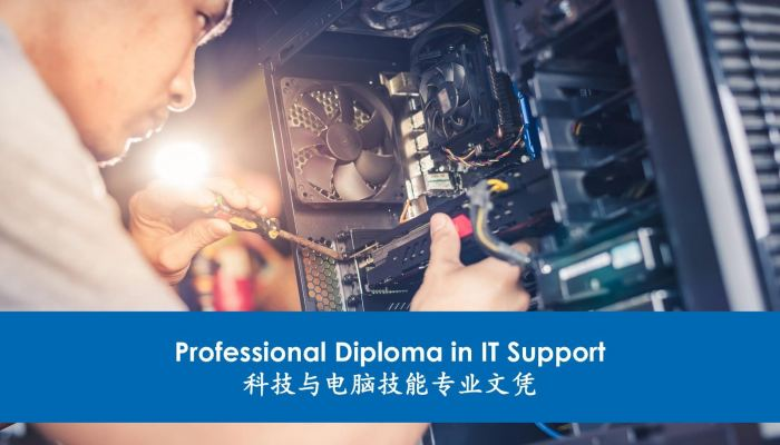 Professional Diploma in IT Support ��30% Online Learning, 70% Pratical��