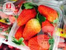 草莓 Strawberry Imported Fruits  进口水果