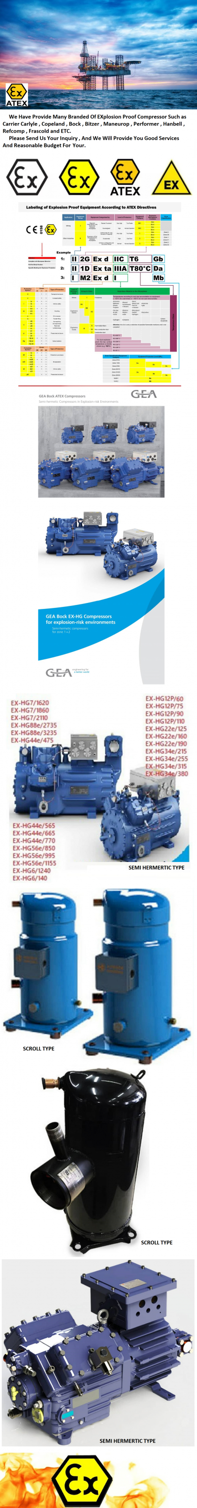 (ATEX) EXPLOSION PROOF COMPRESSOR 2
