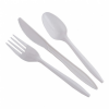 Disposable White Plastic Spoon  Others