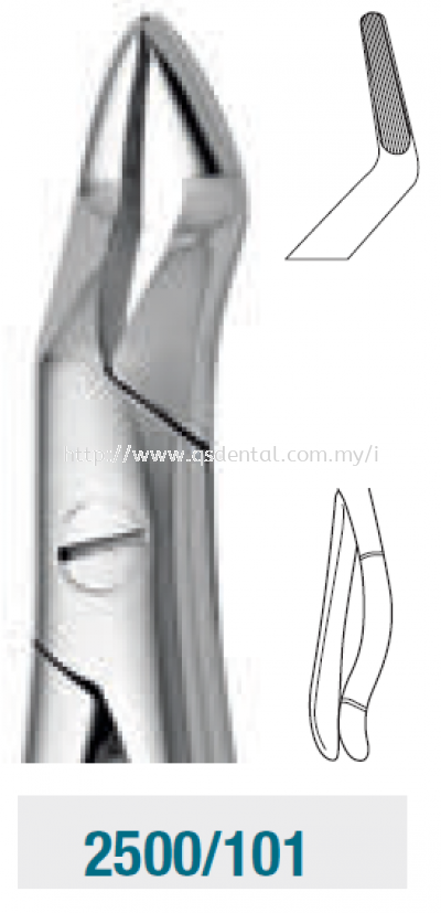 Upper Roots Forceps 2500/101