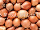 Onions - 100g Grocery
