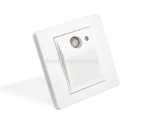 Motion Sensor Step Light