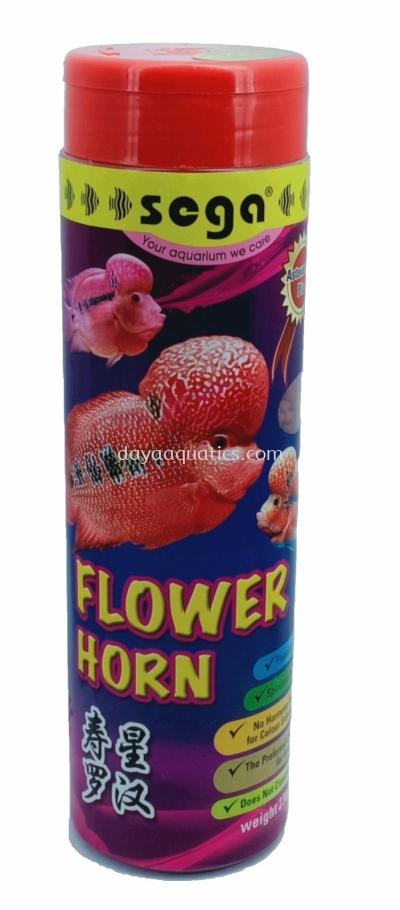 Flower Horn & Kirin