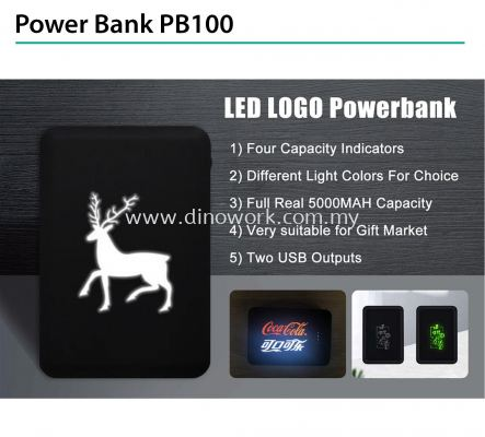 Power Bank PB100