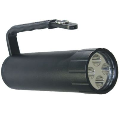 Explosion Proof Portable/Flash Light
