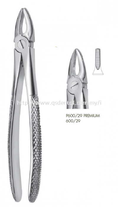 600/29 Upper Front Roots Forceps