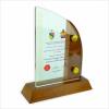 3006 Exclusive Crystal Plaque Wooden Plaque Plaque Series Trophy