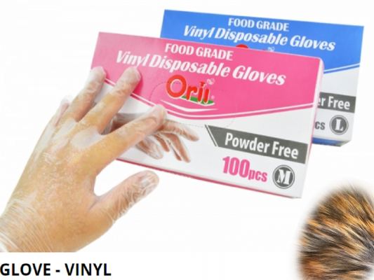 VINYL GLOVE POWDER FREE (1,000 pcs)