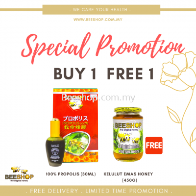 Special Day Promotion - BUY 1 FREE 1