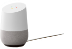 Google Home Home Assistant
