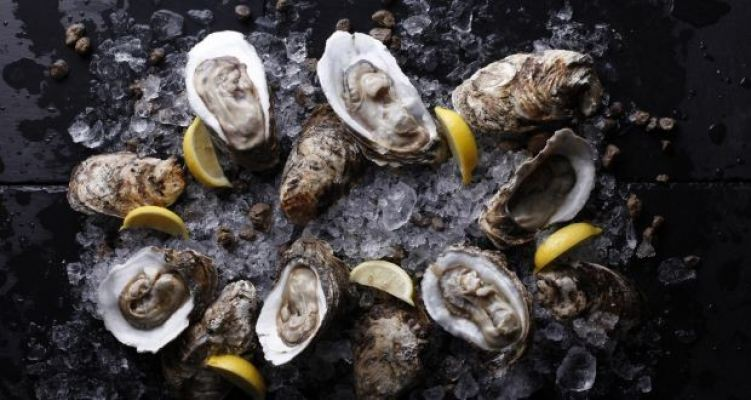 The Fine Selection Oysters