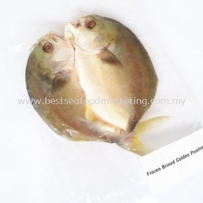 Brined Golden Pomfret / ���ս�� (sold per pack)