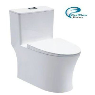 Inspire INS-6099 One Piece Wash Down Water Closet