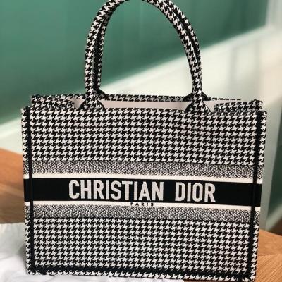 Brand New Dior Book Tote Small Size