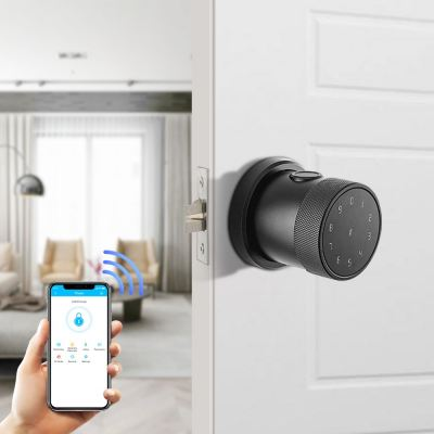 Finger Print Smart Lock-NX2