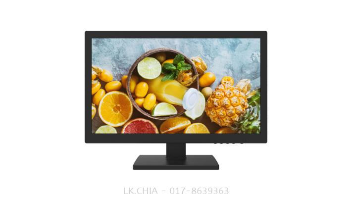 DS-D5019QE 18.5�� Monitor