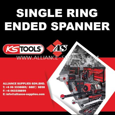 KS TOOLS Single Ring Ended Spanner
