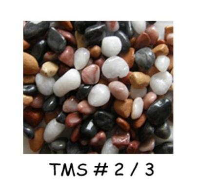 Pebble Stone :  TMS#2/3