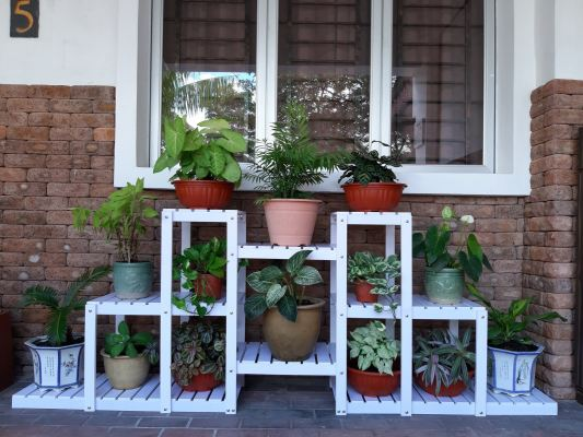 14SW PVC Flower Pot Rack ���ϰ廨��