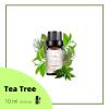 Tea Tree Organic Essential Oil Tea Tree Vichy's Diary Organic Essential Oil Organic Essential Oil
