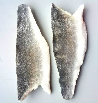 Seabass Skin-on from Turkey