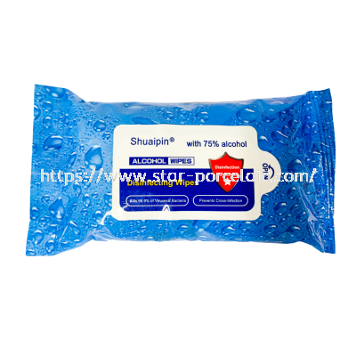 10pcs 75% Alcohol Disinfectant Wipes