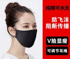 Face Mask 3 Ply Re-Useable Type