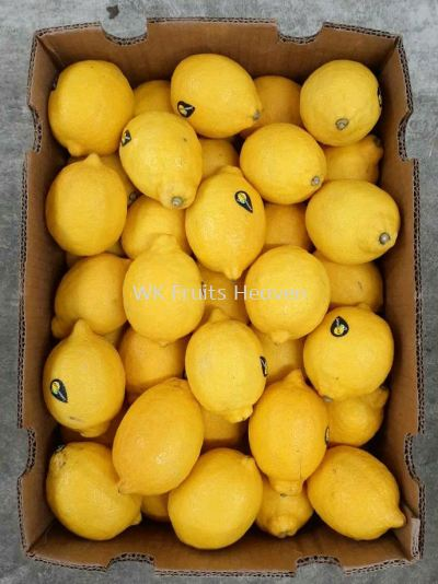 South Africa Seedless Lemon 88's