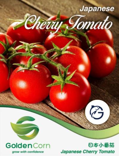 Japanese Cherry Tomato