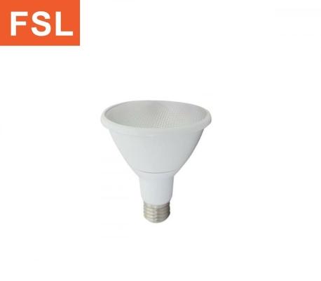 FSL LED Par30