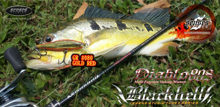 ROD : BLACKHELL     LURE : DIABLO 80MM SINKING - GOLD RED