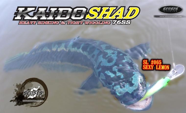 KAIDO SHAD 76MM  HEAVY SINKING - SEXY LEMON - 17G