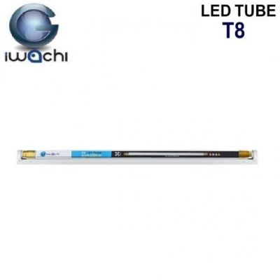 Iwachi T8 Tube Series