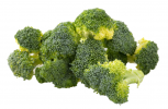 Broccoli Floret Cut (1KG) Precut Vegetables Vegetables