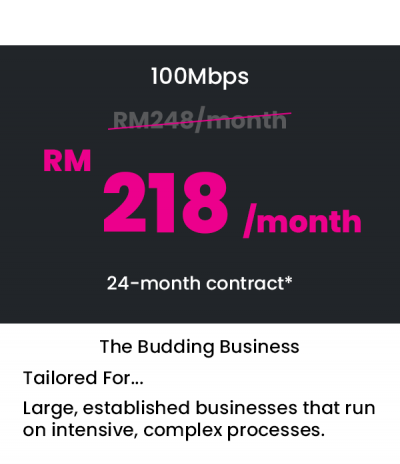 The Budding Business (100Mbps)