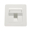 SINGLE PORT 45° FACE PLATE - C FACE PLATE Networking Products