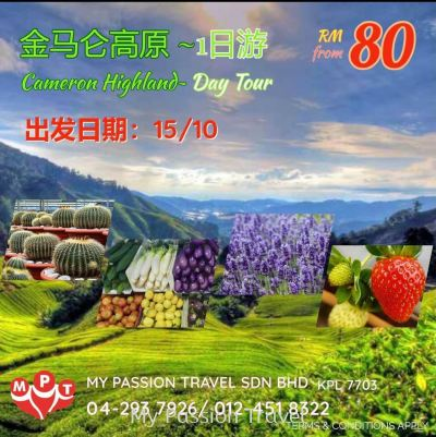 Cameron Highland Day Tour
