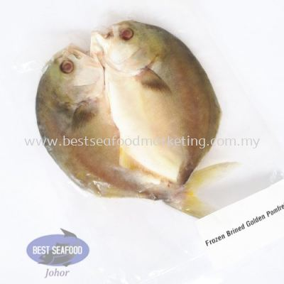 Brined Golden Pomfret / ÑÎ×Õ½ð²ý (sold per pack)