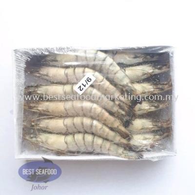 Tiger Prawn / ÀÏ»¢Ïº / Udang Harimau (Size 9-12)(sold per pack)