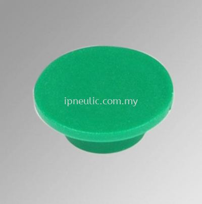 ACCESSORIES-- GREEN DISK PUSHBUTTON