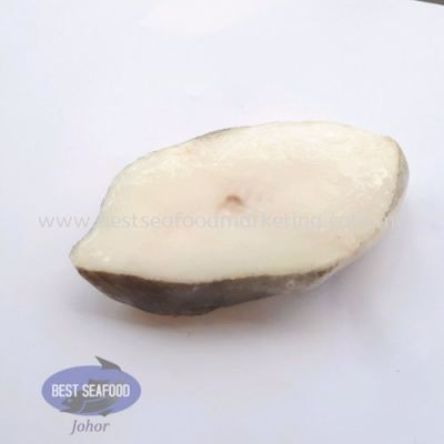 Greenland Halibut Slice (Snow fish) / Ñ©»¨ÓãƬ (±ùµº÷¨Óã) (sold per pcs)