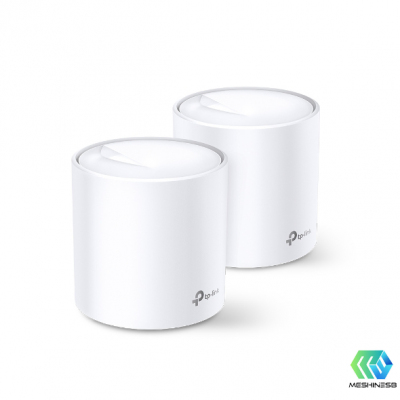 Deco X20(2-pack)