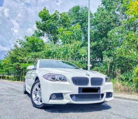 2013 BMW 528i 2.0 Twin Power Turbo