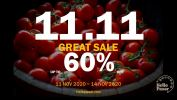 11.11 Great Sale