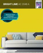 NIPPON EXTERIOR PAINT Q SHIELD - AC2048A BRIGHT LIME