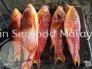 黄梨斑(Ikan Nanas) 黄梨斑(Ikan Nanas) Fresh Seafood (冰鲜海鲜)