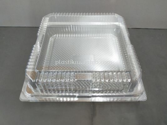 """BX-122 Square Container (8"""")"""